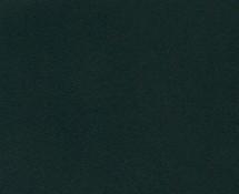 6.31-zielen-jodlowa-mat-49110-215x175
